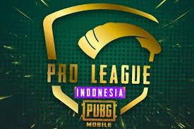 PUBG Mobile Pro League Season 3