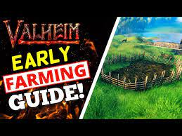 Top actionable tips in Valheim for the players