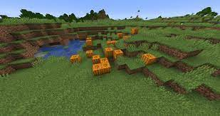 Minecraft: Uses of Pumpkins